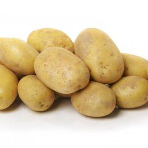 Patata de León