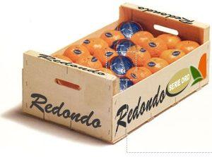 Caja de Clementina Redondo