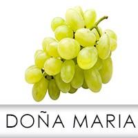 Uva Doña María