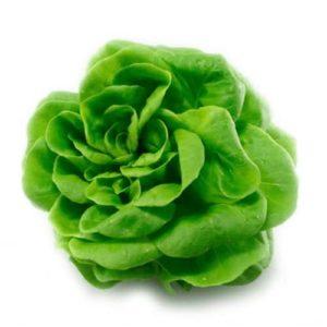 Lechuga Viva Verde (Pieza)