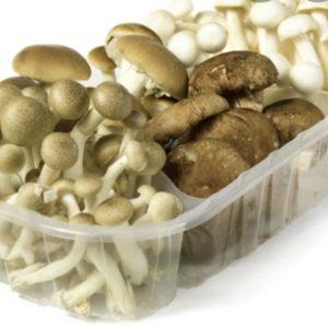 Revuelto de hongos comestibles (precio bandeja)